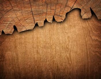 Roteiche Allgäuer Wert und Edelholz