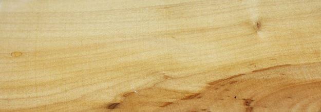 Weissdorntextur - Allgäuer Wert und Edelholz